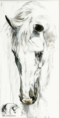 I started to draw and I saw white. Horses are always there but when my pencil was taken from me, someone else drew a wolf. Apparently the spirit of a man is with me with an explanation of the animal so I'm going to Russia for confirmation. Back in a month with a tail!