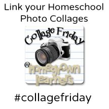 A Weekly Homeschool Linkup where bloggers share their weeks through photo collages -- TONS of homeschool ideas and encouragement here!