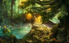 fantasy woods | Fantasy Forest Wallpaper/Background 1280 x 800 - Id: 95624 - Wallpaper ...