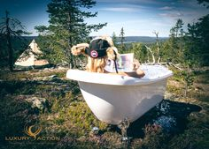 The ice cool solution for when the Arctic going gets hot! Ice Cooler, Clawfoot Bathtub, Arctic, Wilderness, Remote, Explore, Luxury, Hot, Pilot