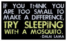 """""If you think you are too small to make a difference, try sleeping with a mosquito."" Great words from the Dalai Lama. Motivational Quotes For Students, Best Motivational Quotes, Best Inspirational Quotes, Amazing Quotes, Great Quotes, Quotes To Live By, Life Quotes, Clever Quotes, Dalai Lama"