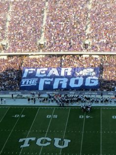 Fear the FROG! Texas Christian University Football.