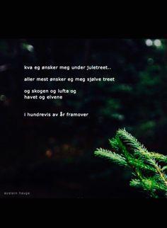 Beautiful poem by Øystein Hauge #noewegian #poet #poem #poetry