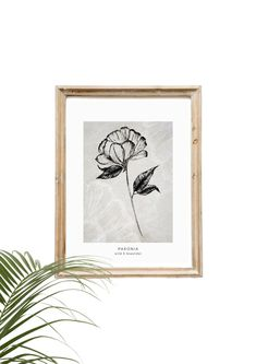 Scandinavian flower poster Paeonia | Etsy Wall Art Decor, Wall Art Prints, Poster Prints, Posters, Scandi Home, Paper Dimensions, Scandinavian Design, Line Art, Flag