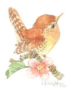 Wren with Flower 4 x 3.75 watercolor