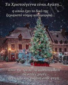 Xmas, Christmas Tree, Good Morning, Glamour, Seasons, Holiday Decor, Teal Christmas Tree, Buen Dia, Bonjour