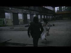 Benjamin Biolay - La Superbe (clip officiel)