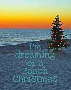 Dreaming of a Beach Christmas That would be nice. but we have been going to the beach here for the last 2 Stephens days 😍😍😍 love it. Tropical Christmas, Beach Christmas, Coastal Christmas, Beach Holiday, Christmas Sayings, Christmas In Florida, Christmas Eve, Christmas Island, Christmas Stuff