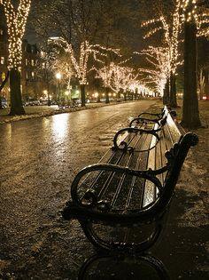Christmas in Boston on Commonwealth Avenue