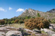 Parque Nacional de la Sierra de Guadarrama se encuentra entre Madrid y Segovia.http://www.skyscanner.es/noticias/los-10-mejores-parques-naturales-de-españa