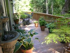 The back deck facing west.