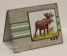 Snowy Moose Creations: Walk in the Wild