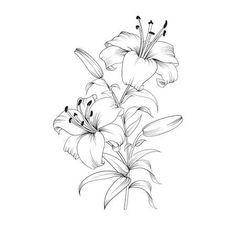 71 Best Fleur De Lys Images Fleur De Lis Fleur De Lis