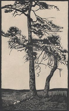 Cyril Saunders Spackman, Trees in Landscape, 1930s