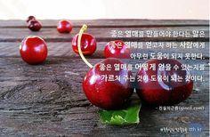 좋은 열매를 만들어야 한다는 말은 좋은 열매를 얻고자 하는 사람에게 아무런 도움이 되지 못한다. 좋은 열매를 어떻게 얻을 수 있는지를 가르쳐 주는 것이 도움이 되는 것이다.  - 진실의근원  #톡톡힐링