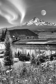 The Apple House at Mount Hood Organic Farms from JonathanPhotos.com #JonathanPaulson