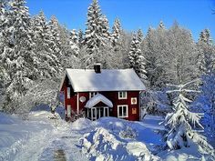 gardens in winter photos in sweden Polo Norte, Red Houses, Red Cottage, Swedish Cottage, Swedish House, Winter Photos, Small Places, Winter Beauty, Winter Garden