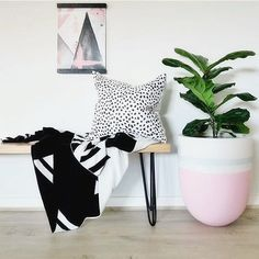 Our U Pots are handpainted in a selection of pastels and brights to add a pop of colour to your home, or email for a custom colour 👍🏻 Cube & Cup pots also in our online store, www.luum.com.au xxx  Styling & 📷 by @insidefourlines 😘  #plantpot#indoorpot#gardenpot#eggpot#paintedpot#fiddleleaffig#greenlife#fig#styling#designerdecor#design#interiorstyling#interior4all#homestyle#pinkdecor#interiors#colour#homedecor#interiorstyle#interior444 #interior2you#pot#pots