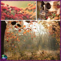 C'est bientôt Samhain, je vous ai concocté plein de nouveautés artisanales dont un projet de longue date qui me tenait tellement à coeur... je vous dit tout... ou presque... Dit, Creations, Painting, Art Crafts, Puertas, Baby Born, Painting Art, Paintings