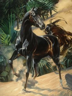 Proud Arabian stallion in the desert of Egypt.