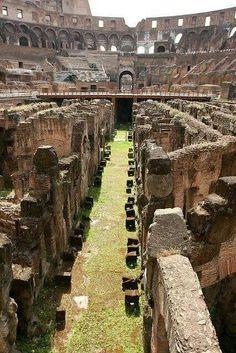 Sua maestà, il Colosseo