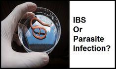 IBS or Parasite Infection?  www.ibshelponline.com