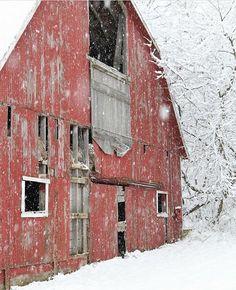 Guzide — old barn // frenchlarkspur. Farm Barn, Old Farm, Country Barns, Country Life, Country Living, Country Charm, Country Roads, Barns Sheds, Building A Shed