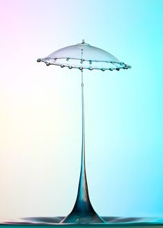 Heinz Maier: New Pavilion