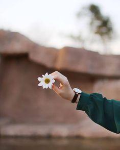 - Photography, Landscape photography, Photography tips Hand Photography, Girl Photography Poses, Creative Photography, Landscape Photography, Photo D Art, Foto Art, Girl Photo Shoots, Girl Photos, Islamic Girl