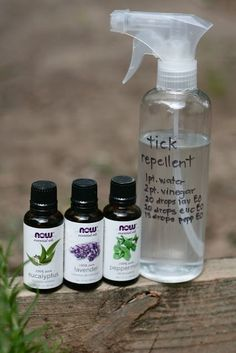 Tick Repellent: White Vinegar, Eucalyptus Oil, Lavender Oil, Peppermint Oil (Kornerstone Farms: Easy DIY Natural TICK Repellent TICKS)