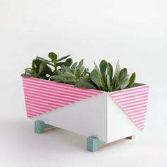 This Modern Planter is inexpensive, easy to make and a colorful edition to any home.