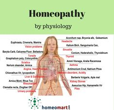 Get Homeopathy remedies by physiology. Buy best homeopathy medicines from head to toe for various ailments. Homeopathic remedies are classified by physiology and as per matching symptoms.
