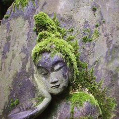 nezu_museum_tokyo_japan. #zen#garden#beautiful#landscape#nature#japanesegarden#drygarden#zengarden#rockgarden#pond#bonsai#coi#carp#ornament#buddhist#temple#baskin#shrine#lantern#tourou#tukubai#moss#plants#green#sakura#momiji#mountain #travel#japan#trees