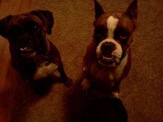 Grett and Lola