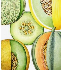 New to organic eating? Tips to organic. Eat natural, eat health, eat organic. Organic food.
