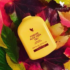 Our bestseller Forever Aloe Vera Gel supports normal health during all seasons! Also the most colorful, autumn! #ForeverLiving #Autumn #Fall #AloeVera #Health