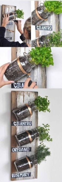 Transformed – Mason Jar Herb Garden