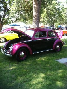 Oh My Goodness !!! 1963 VW Beetle