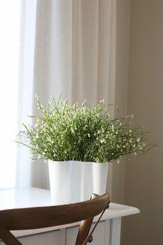 Savoy vase, Aalto vase ideas, scandinavian home, finnish design Scandinavian Home, Vase Ideas, Curtains, Shower, Design, Rain Shower Heads, Blinds, Showers