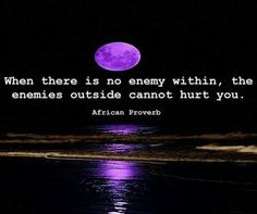 When there is no enemy within, the enemies outside cannot hurt you ~ African proverb