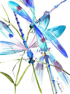 Turquoise Blue Dragonflies X Original Watercolor Painting Dragonfly Art Design One Of A Kind