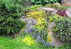 Seattle Garden Ideas: Retaining Walls & Rockeries