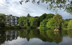 Living near woodlands is good for children and young people's mental health