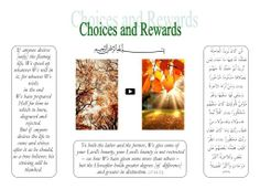 Choices and Rewards