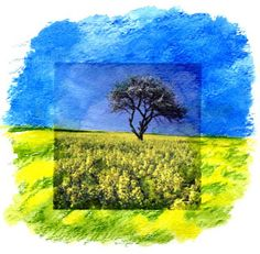 Art Projects for Kids: Mixed Media Landscape