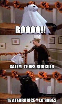 """¡Tremendo Susto! #ImagenDelDia de la serie """"Sabrina y la bruja adolescente"""" #SabrinaTeenagerWitch"""
