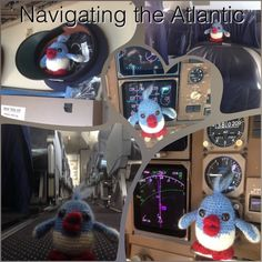 Mr T, maatje on his way in a real TUI cockpit! Gehaakte vogeltjes, 'maatje'  Haken , vogeltjes , kuiken Crochet birds