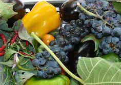 Frutta e ortaggi | melillo.biz Tra le nostre produzioni vantiamo ulivi, asparagi, ciliegie, mandorle, legumi, prodotti ortofrutticoli stagionali.
