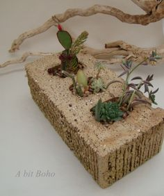 Simple brick re-purposed into a delightful mini succulent garden planter- A variety of mini gardens will be available beginning April 19 at the C-Street City Market! https://www.facebook.com/sweetestlittlemarket?ref=stream