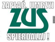 Polish Memes, Best Memes, Haha, Humor, Funny, Nice, Random, Madeleine, Ha Ha